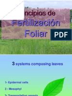 02-Absorcion-foliar 2 (1)