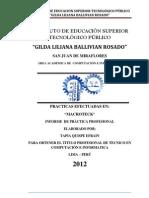 informe de la practica TAPIA QUISPE.docx
