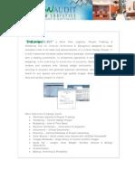 Design Audit Brochure