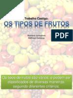 Apresentação Tipos de Frutos