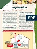 Microcogeneracion GAS NATURAL
