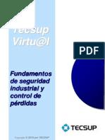Fundamentos de Seguridad Industrial y Control de Perdidas.