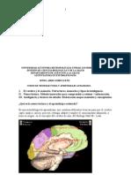 neuroaprendizaje y lectura