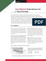 enterokinase manual