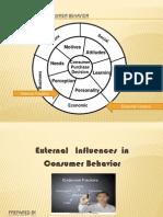 Consumer Behaviour-External Factors