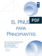 UNDP for Beginners Es
