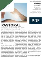 Boletim Semanal 23/12/2012 a 29/12/2012