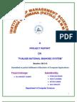 PUNJAB NATIONAL BANK VB PROJECT