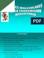 Bases Moleculares de La Transmision Hereditaria