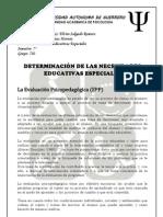 Determinacion de Las NEE (Lizeth)