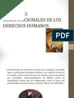 GARANTÍAS CONSTITUCIONALES DE LOS DERECHOS HUMANOS