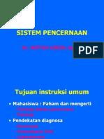 sistem-pencernaan