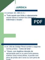 1- A NORMA JURÍDICA[1]