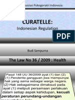 Prof Budi - BS CURATELLE Indonesian Regulation Konas API 10april11