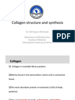 Collagen Structure and Synthesis IUA 2013