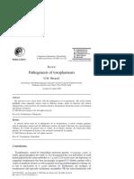 Patogenia de La Toxoplasmosis