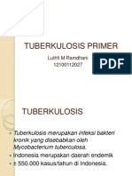 Css Tuberkulosis Primer