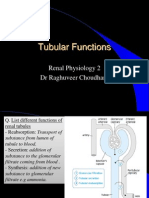 Tubular functions of kidney