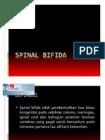 Spinal Bifida