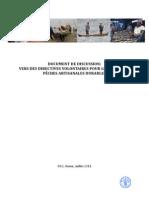 Discussion Document SSF Juin 2011
