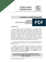 Historia de La Reduccion Del Da%C3%B1o