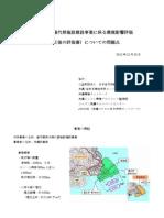12/25 沖縄・辺野古アセス補正評価書に対する緊急記者会見配布資料