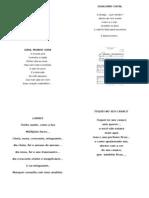 Poesias Do Brodosqui(Ricardo Fernandes)