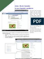 20090205 Instruções Para Impressao