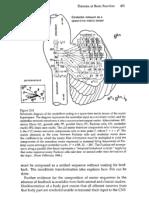 Theories of Brain Function (Pellionisz, Llinás, Crick), In