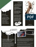 Brochure (1)