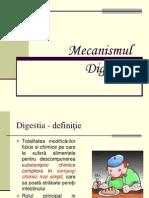 Mecanismul-digestiei