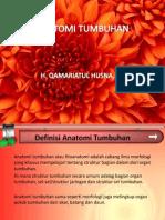 BOTANI  7. ANATOMI TUMBUHAN