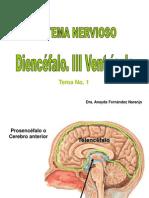 diencefalo y III Ventriculo