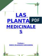 PLANTAS MEDICINALES DEL PERÚ