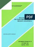Diagnostico Forestal de La Amazonia 1995