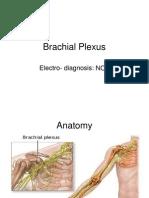 Brachial Plexus NCV
