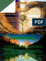 Dezvoltarea Durabila PowerPoint
