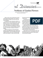 Identifying Problems of Garden Flowers