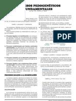 Genesis 7 - Procesos Pedogeneticos Fundamentales X