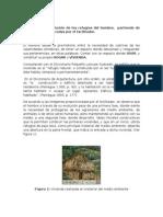 EVOLUCIÓN DEL REFUGIO DEL HOMBRE