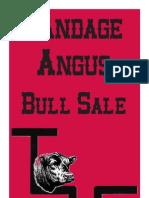 Sandage Angus 2013 Bull Sale