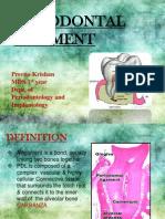periodontal ligament