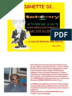 Vignette Telecountrynews
