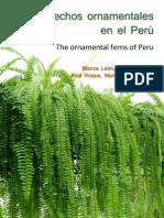 Helechos ornamentales en el Perú