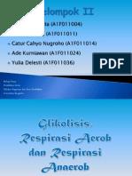 Glikolisis, Respirasi Aerob dan Respirasi Anaerob