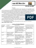 Newsletter Jan. 2013