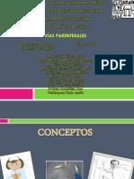 Vias Parenterales (2)