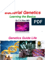 Bacterial Genetics Basics -