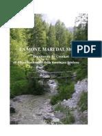 Documento programmatico dei comitati per la difesa della montagna friulana