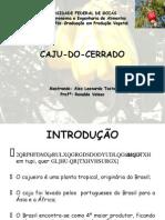65910521 Caju Do Cerrado